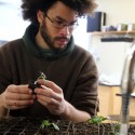 Plant Science, Ecology