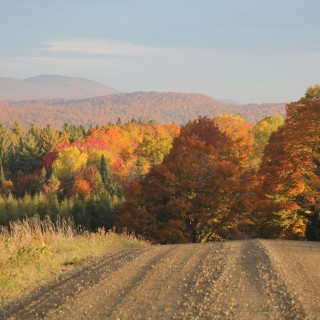 Fall, Landscape, Autumn, Foliage, Craftsbury