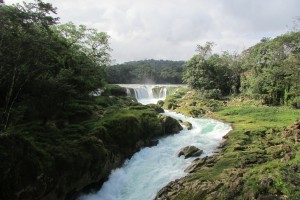 Global Field Study, Chiapas